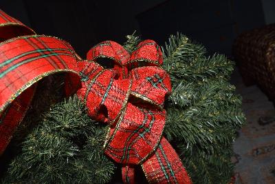 ribbon-attach-to-wreath