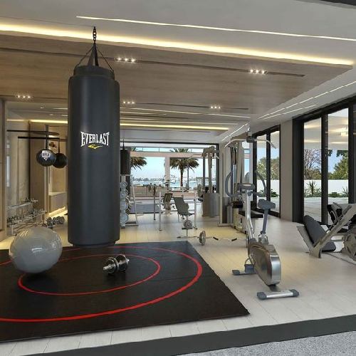 Diy gym village coast for Best home gym design ideas